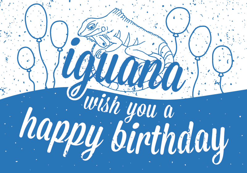 Iguana wish you a happy birthday